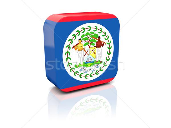 Tér ikon zászló Belize tükröződés fehér Stock fotó © MikhailMishchenko