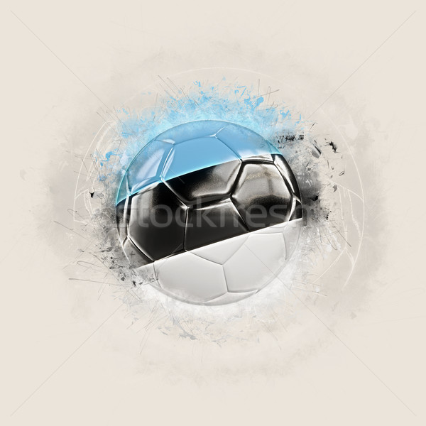 Grunge football with flag of estonia Stock photo © MikhailMishchenko