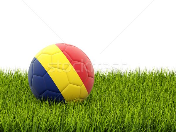 футбола флаг Румыния зеленая трава Футбол области Сток-фото © MikhailMishchenko