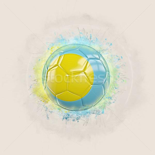 グランジ サッカー フラグ パラオ 3次元の図 世界 ストックフォト © MikhailMishchenko