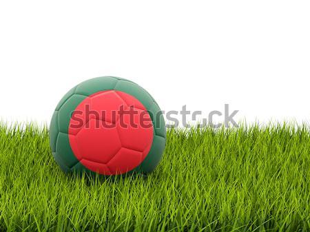 Futball zászló Banglades zöld fű futball mező Stock fotó © MikhailMishchenko