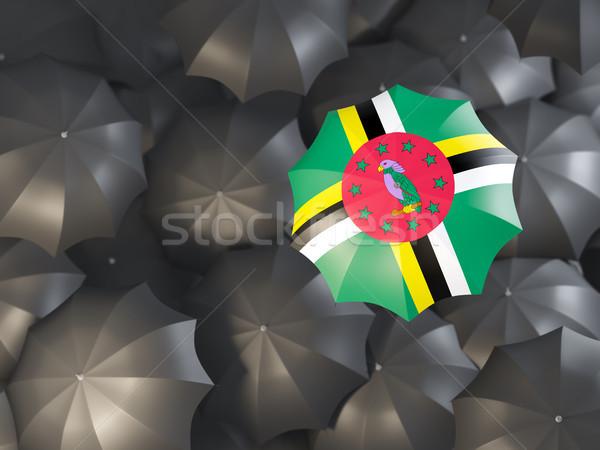 зонтик флаг Доминика Top черный Сток-фото © MikhailMishchenko