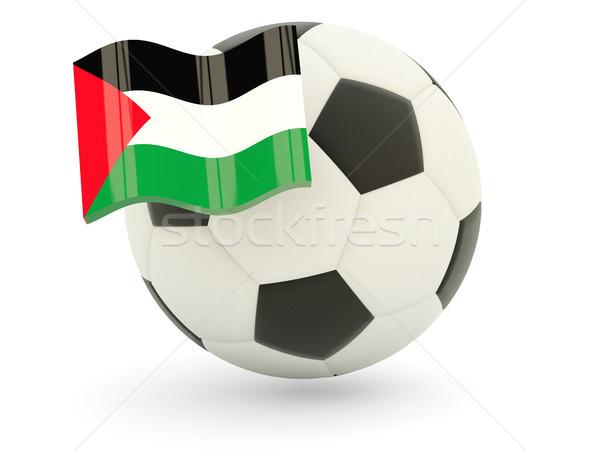 Futball zászló terület izolált fehér sport Stock fotó © MikhailMishchenko