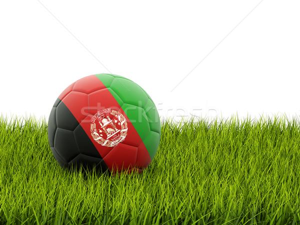 футбола флаг Афганистан зеленая трава Футбол области Сток-фото © MikhailMishchenko