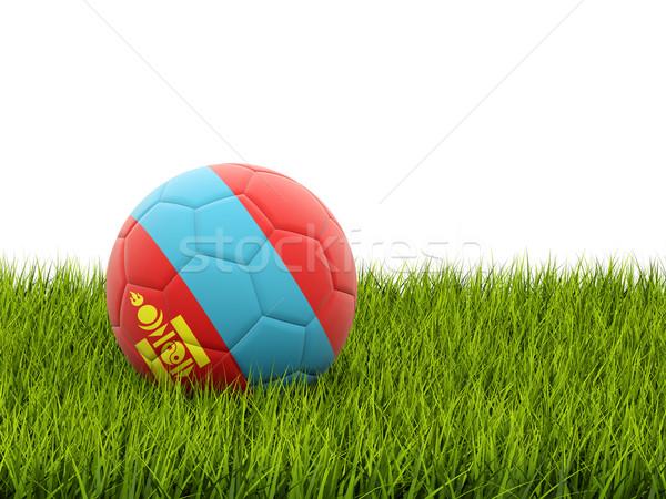 Futball zászló Mongólia zöld fű futball mező Stock fotó © MikhailMishchenko