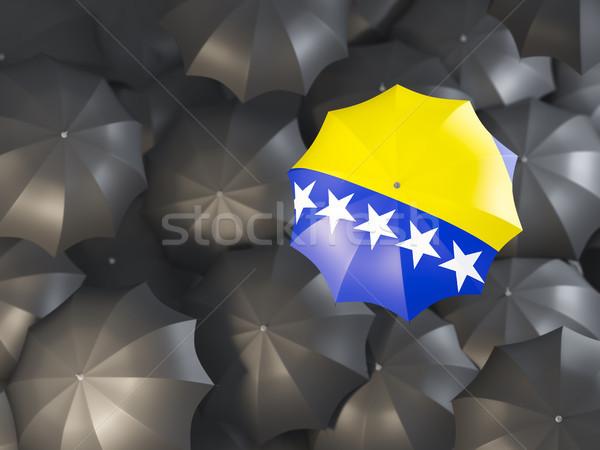 Foto stock: Paraguas · bandera · Bosnia · Herzegovina · superior · negro · paraguas