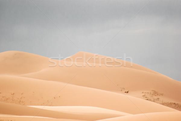 Sand dunes in Gobi desert Stock photo © MikhailMishchenko