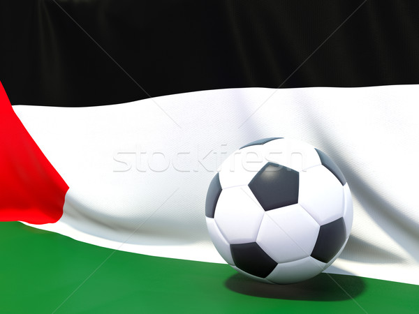 Flag of palestinian territory with football in front of it Stock photo © MikhailMishchenko