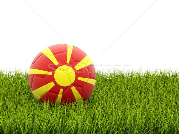 Voetbal vlag Macedonië groen gras voetbal veld Stockfoto © MikhailMishchenko