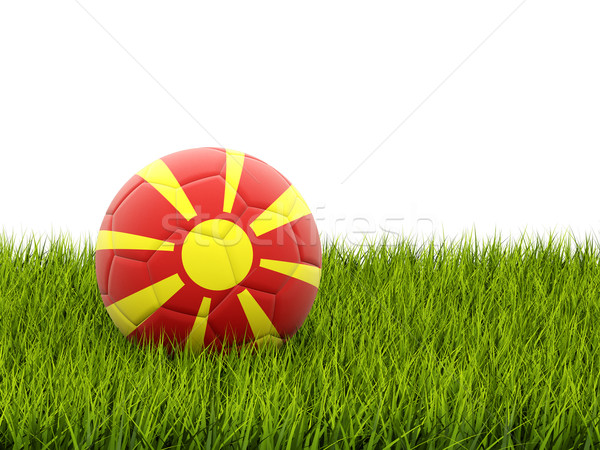 Fútbol bandera Macedonia hierba verde fútbol campo Foto stock © MikhailMishchenko