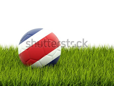 Futebol bandeira Kuweit grama verde futebol mundo Foto stock © MikhailMishchenko