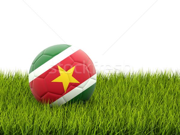 футбола флаг Суринам зеленая трава Футбол области Сток-фото © MikhailMishchenko