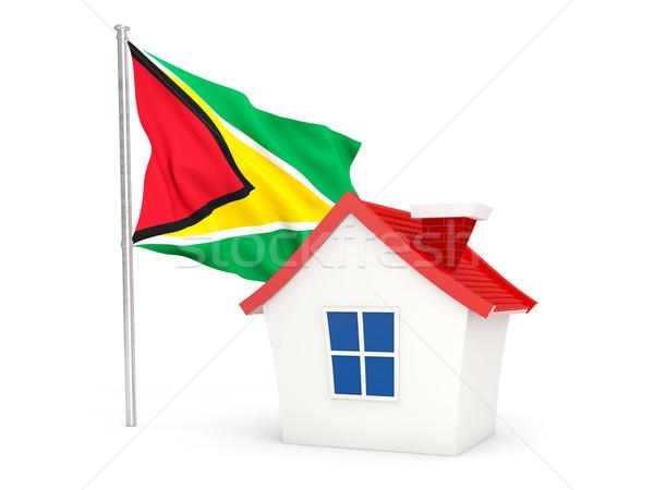 Ház zászló Guyana izolált fehér otthon Stock fotó © MikhailMishchenko