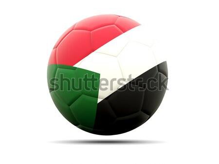 футбола флаг Замбия 3d иллюстрации Футбол спорт Сток-фото © MikhailMishchenko