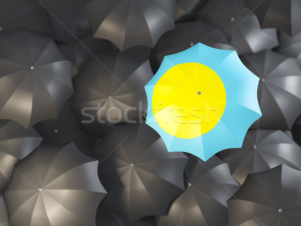 傘 フラグ パラオ 先頭 黒 傘 ストックフォト © MikhailMishchenko