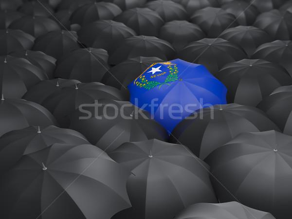 Nevada bandeira guarda-chuva Estados Unidos local bandeiras Foto stock © MikhailMishchenko