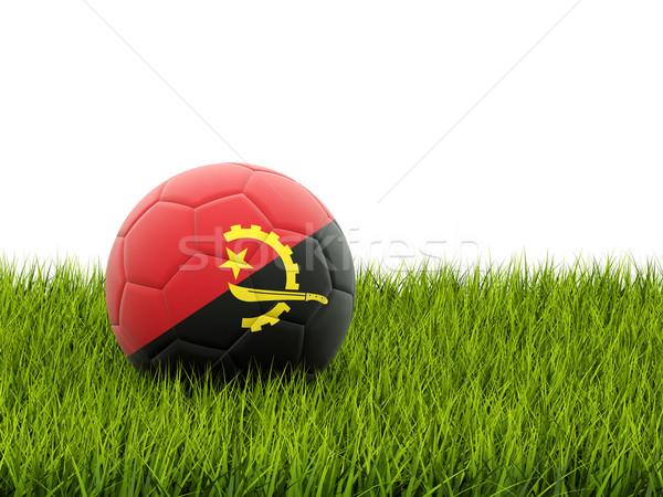 футбола флаг Ангола зеленая трава Футбол Мир Сток-фото © MikhailMishchenko