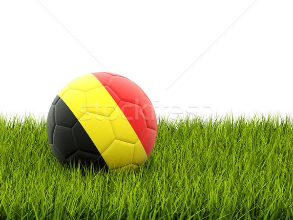 サッカー フラグ ベルギー 緑の草 サッカー フィールド ストックフォト © MikhailMishchenko
