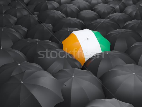 Umbrella with flag of cote d Ivoire Stock photo © MikhailMishchenko