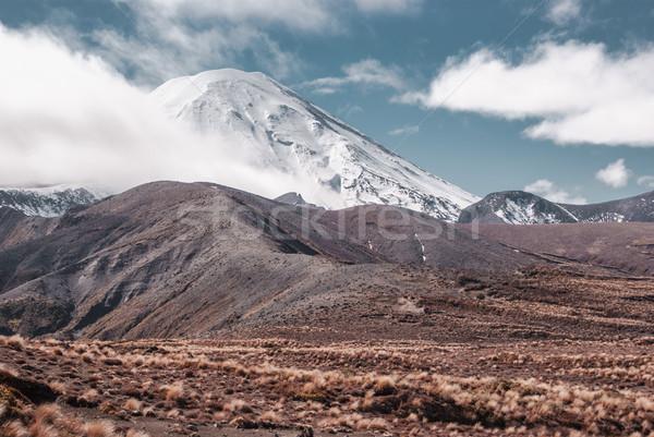 高山 風景 公園 ハイキング ニュージーランド 北 ストックフォト © MikhailMishchenko