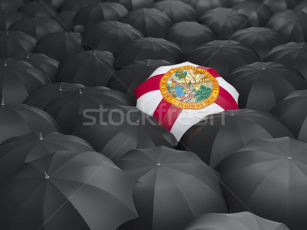 Florida bandiera ombrello Stati Uniti locale bandiere Foto d'archivio © MikhailMishchenko