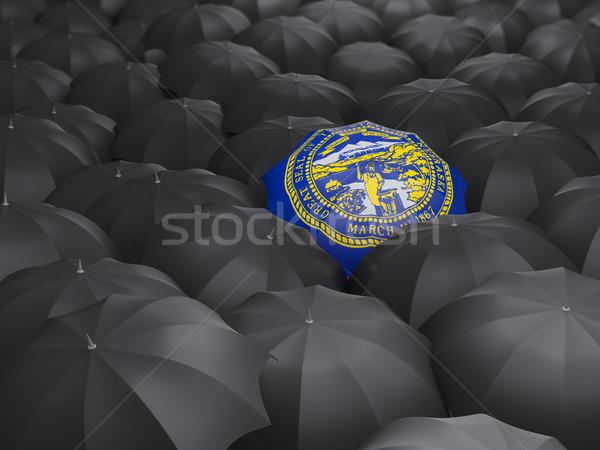nebraska state flag on umbrella. United states local flags Stock photo © MikhailMishchenko