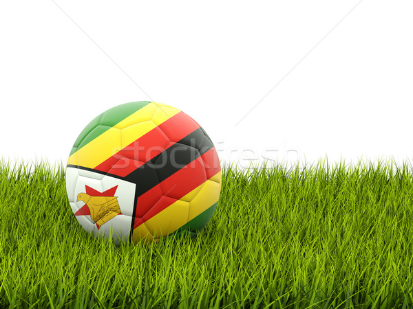 Football pavillon Zimbabwe herbe verte football domaine Photo stock © MikhailMishchenko