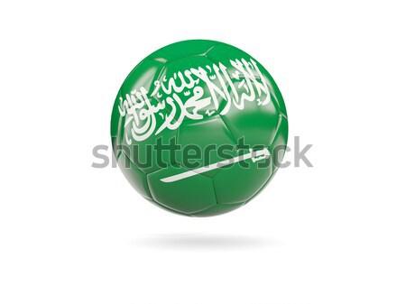Ikon bayrak Suudi Arabistan yalıtılmış beyaz seyahat Stok fotoğraf © MikhailMishchenko