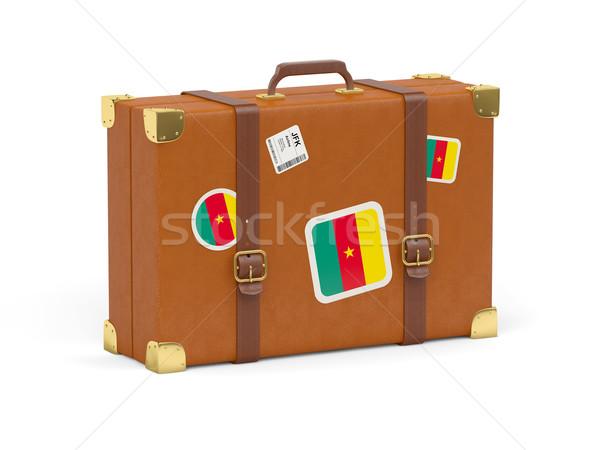 чемодан флаг Камерун путешествия изолированный белый Сток-фото © MikhailMishchenko