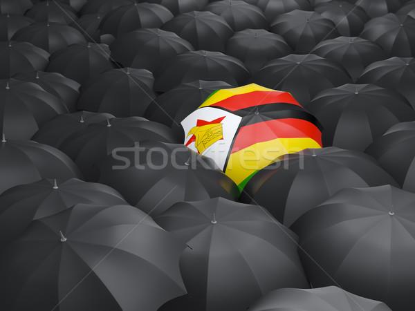 Ombrello bandiera Zimbabwe nero ombrelli viaggio Foto d'archivio © MikhailMishchenko
