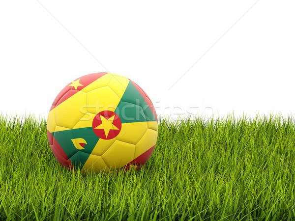 Futball zászló Grenada zöld fű futball mező Stock fotó © MikhailMishchenko