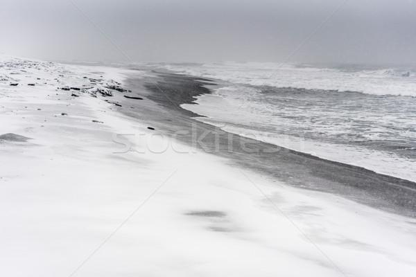 Sneeuwstorm strand oceaan zwarte zand landschap Stockfoto © MikhailMishchenko