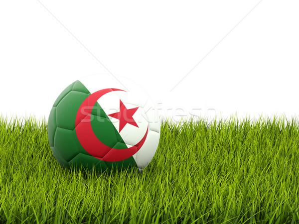 Futebol bandeira Argélia grama verde futebol campo Foto stock © MikhailMishchenko