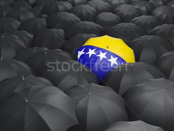 Paraguas bandera Bosnia Herzegovina negro paraguas viaje Foto stock © MikhailMishchenko