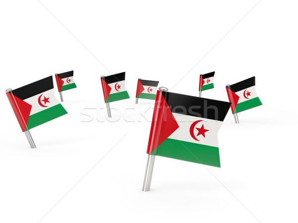 квадратный флаг западной Сахара изолированный белый Сток-фото © MikhailMishchenko