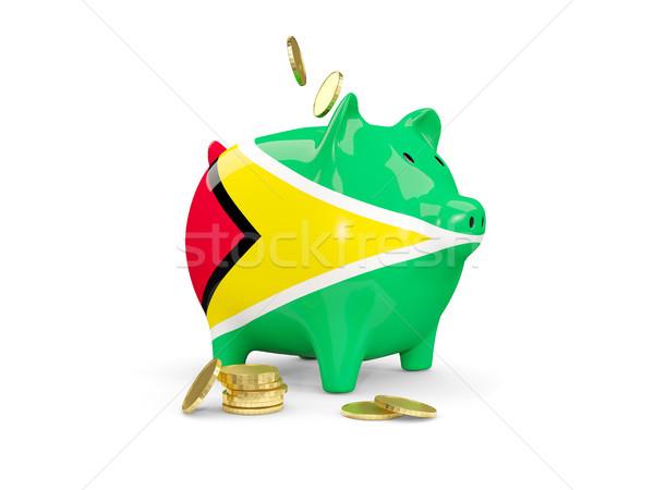 Stok fotoğraf: Yağ · kumbara · Guyana · para · yalıtılmış · beyaz