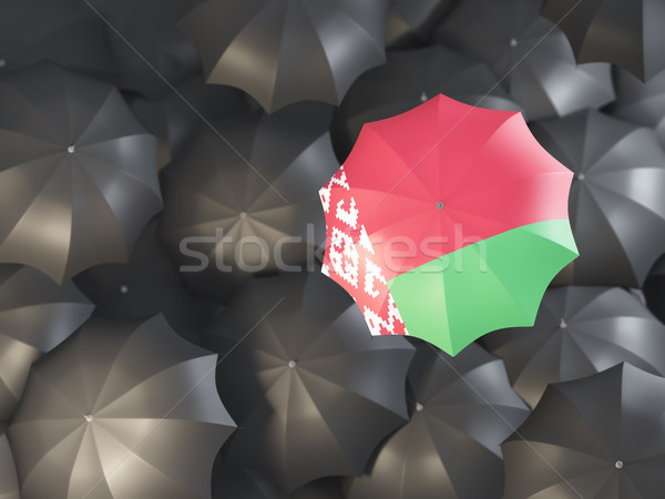 Umbrella with flag of belarus Stock photo © MikhailMishchenko
