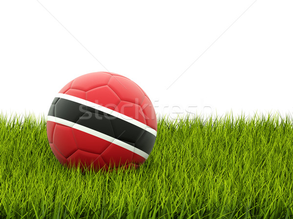 футбола флаг зеленая трава Футбол спорт области Сток-фото © MikhailMishchenko