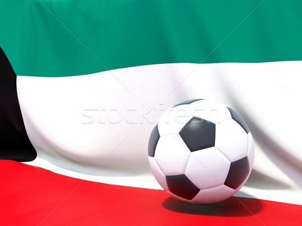 флаг Кувейт футбола команда стране Сток-фото © MikhailMishchenko