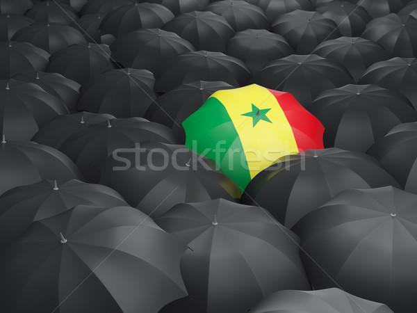 傘 フラグ セネガル 黒 傘 雨 ストックフォト © MikhailMishchenko