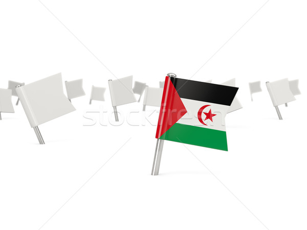 Stock fotó: Tér · tő · zászló · western · Szahara · izolált
