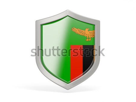 Shield icon with flag of madagascar Stock photo © MikhailMishchenko