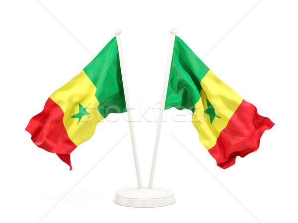 Kettő integet zászlók Szenegál izolált fehér Stock fotó © MikhailMishchenko