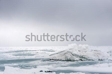 айсберг океана снега льда путешествия Сток-фото © MikhailMishchenko