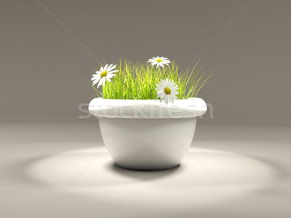 Erba fiori vaso grigio luce giardino Foto d'archivio © MikhailMishchenko