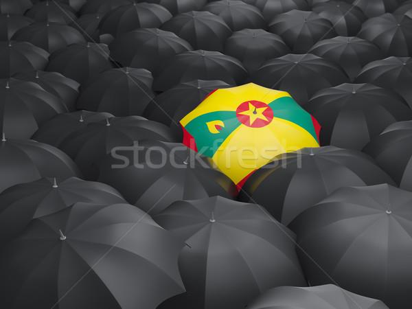Paraplu vlag Grenada zwarte parasols regen Stockfoto © MikhailMishchenko
