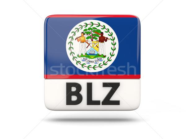 Tér ikon zászló Belize iso kód Stock fotó © MikhailMishchenko