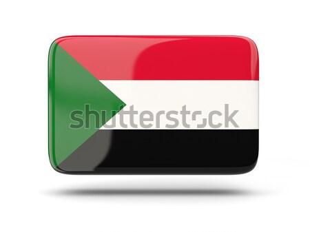 Square icon with flag of palestinian territory Stock photo © MikhailMishchenko