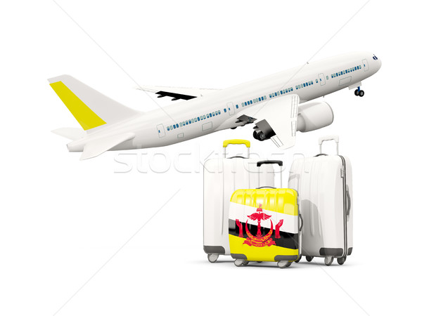 Luggage with flag of brunei. Three bags with airplane Stock photo © MikhailMishchenko