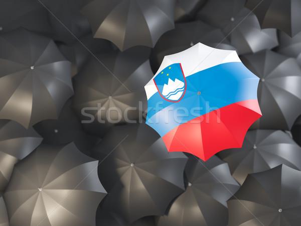 Ombrello bandiera Slovenia top nero ombrelli Foto d'archivio © MikhailMishchenko